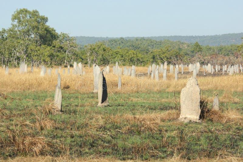 Parc national de Litchfield, Australie photos libres de droits