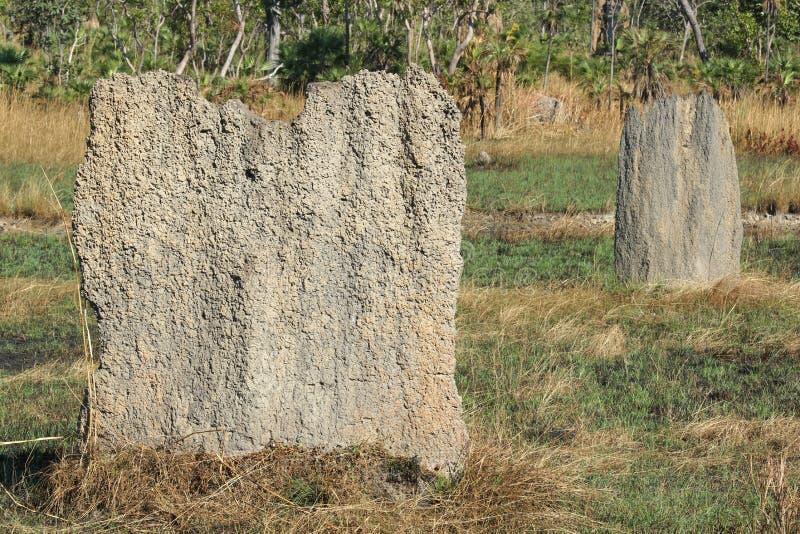 Parc national de Litchfield, Australie photos stock
