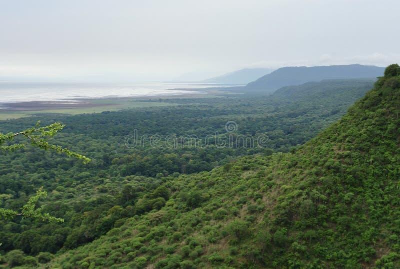 Parc national de Manyara de lac en Afrique images stock