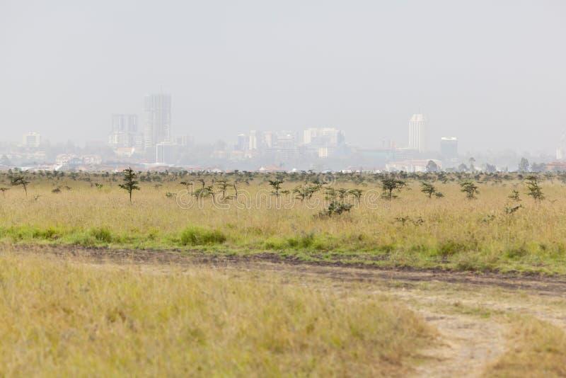 Parc national de Nairobi photo stock