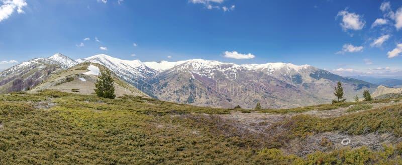 Parc national de Pelister, Bitola, Macédoine photo stock