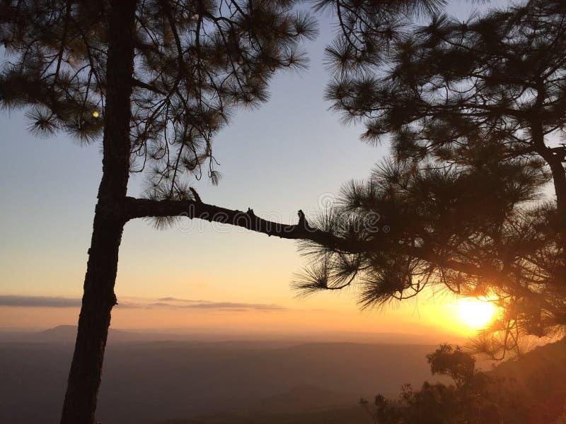 Parc national de Phu Kradueng photos stock