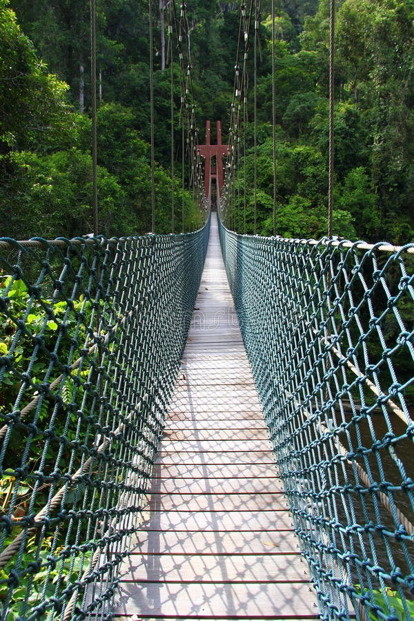Parc national de Temburong d'Oscillation-pont photos stock