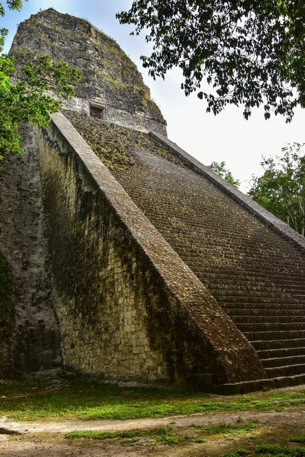 Parc national de Tikal, Guatemala photo libre de droits