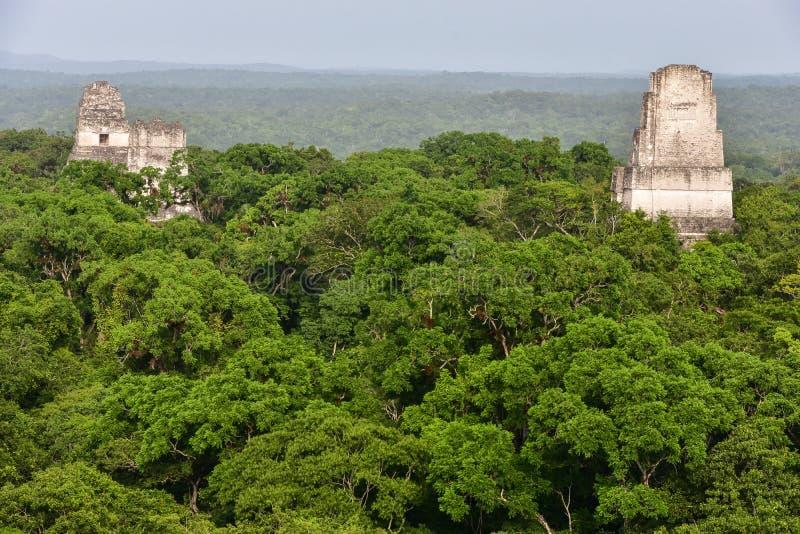 Parc national de Tikal, Guatemala image stock