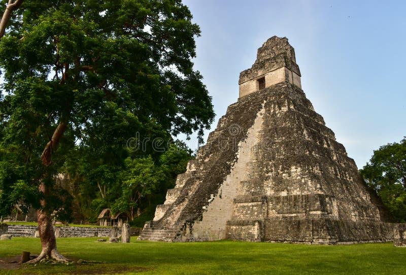 Parc national de Tikal, Guatemala photos stock