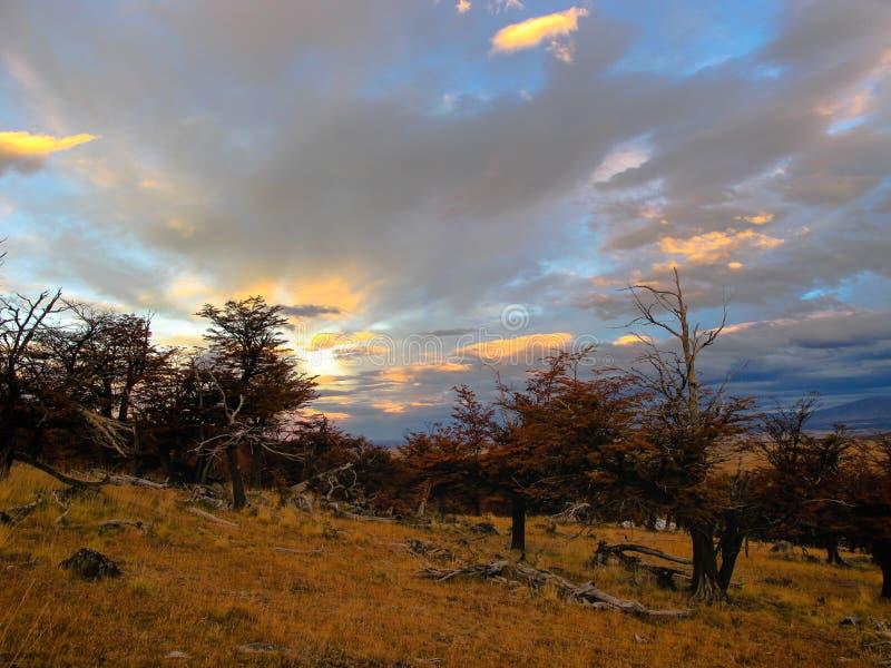 Parc national de Torres del Paine au Chili images stock