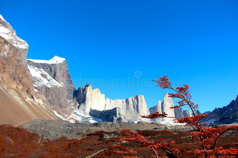 Parc national de Torres del Paine de point de vue de Britanico images stock