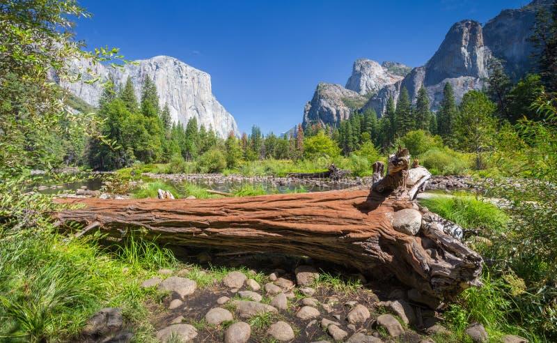 Parc national de Yosemite en été, la Californie, Etats-Unis photo stock