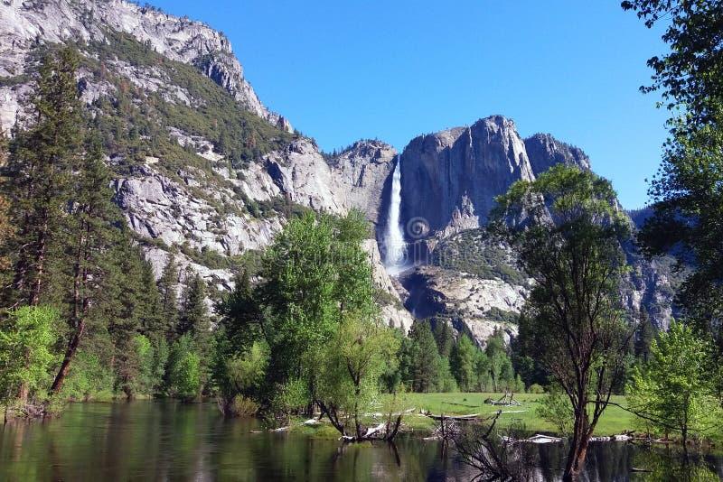 Parc national de Yosemite, la Californie le ressort photo libre de droits