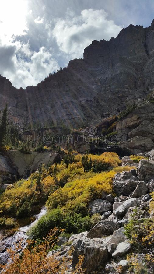 Parc national des Rocheuses, ruisseau Tyndall photo libre de droits