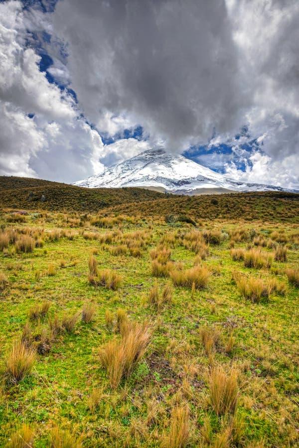 Parc national du Cotopaxi image stock
