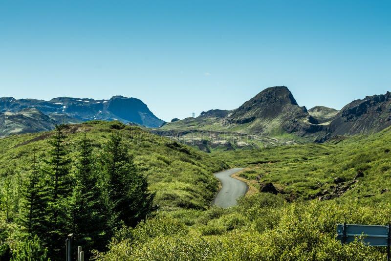 Parc national Islande d'été photo libre de droits