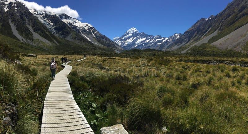 Parc national Nouvelle-Zélande de cuisinier de Mt image libre de droits