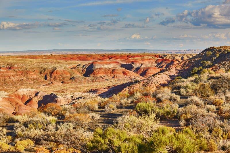 Parc national peint de désert en Arizona, Etats-Unis images libres de droits