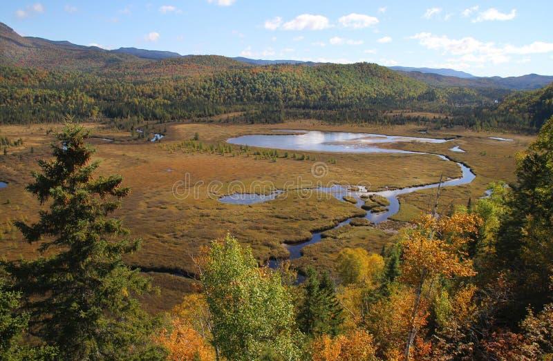 Parc nationales DES Monts-Valin lizenzfreie stockbilder