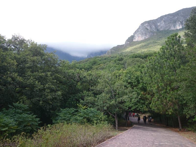 Parc naturel d'Estanzuela de La photos libres de droits