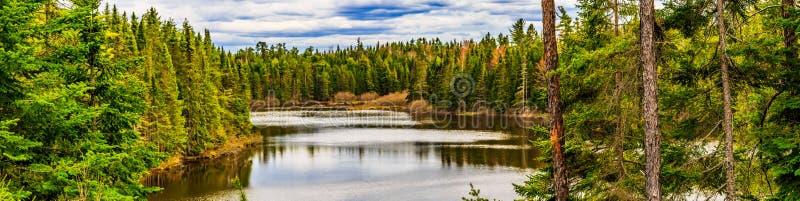 Parc naturel de crique de moulin, couleurs de ressort dans plus grand Moncton, Nouveau Brunswick, Canada photos libres de droits
