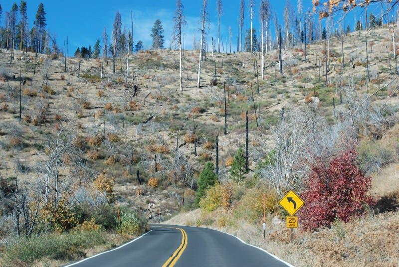Parc naturel de Yosemite après le grand feu photographie stock