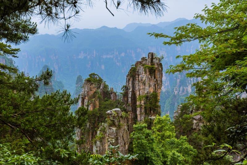 Parc naturel des montagnes Tianzi Avatar - Wulingyuan China photographie stock libre de droits
