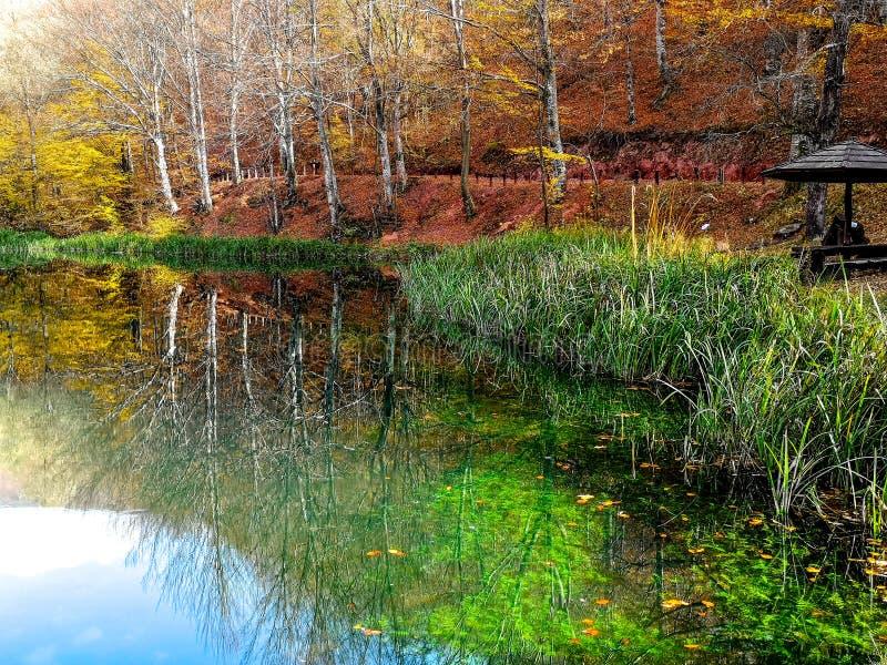 Parc naturel Grza près du Paracin, Serbie photos stock