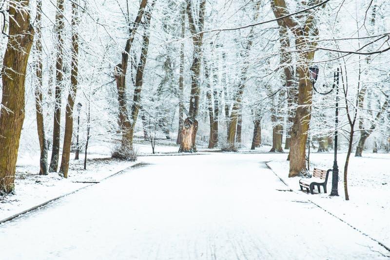 Parc neigé de ville Horaire d'hiver Noël images libres de droits