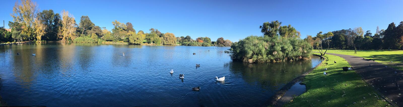Parc occidental de ressorts à Auckland Nouvelle-Zélande photos libres de droits