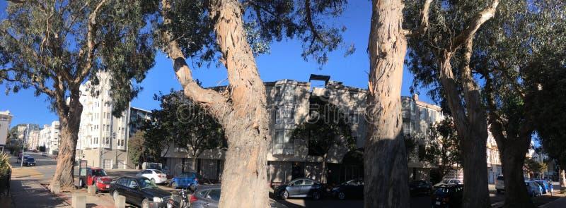 Parc officiel du ` s de San Francisco le plus petit, appelé pour son premier activiste de droits civiques, 1 photo libre de droits