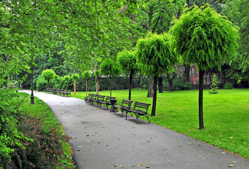 Parc paisible d'été avec un trottoir photo libre de droits
