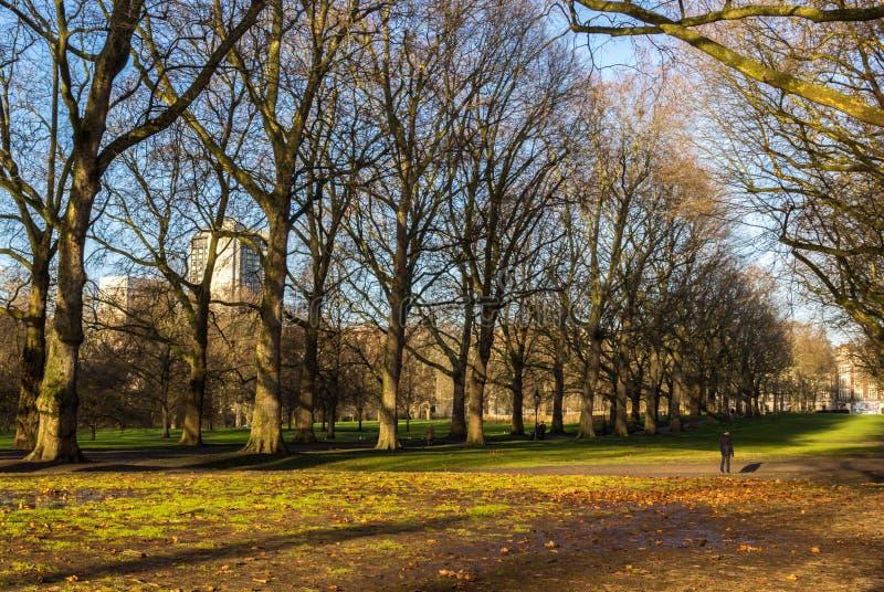 Parc public à Londres photos stock