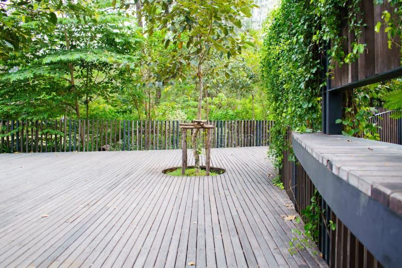 Parc public Bangkok, Thaïlande, parc pour la relaxation et l'exercice images libres de droits
