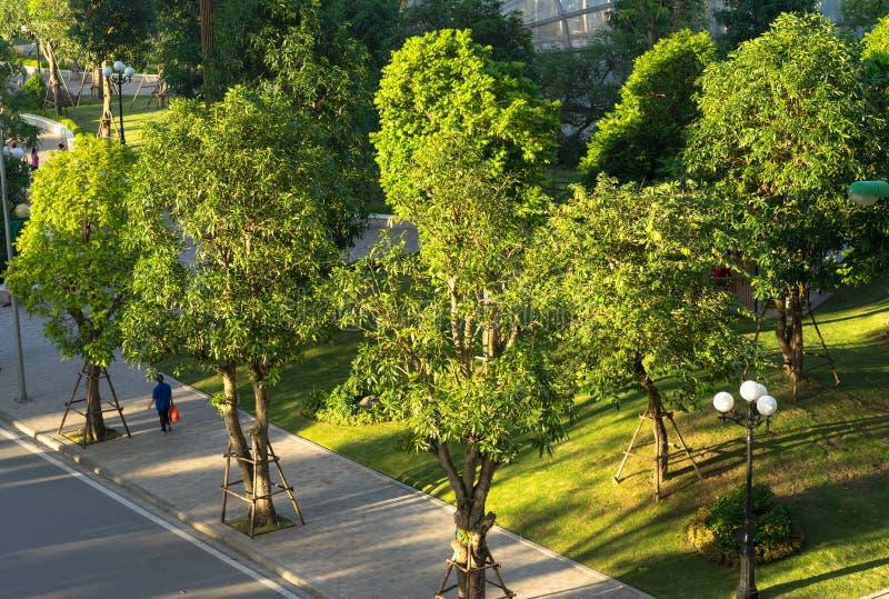 Parc public et paysage urbain pendant le lever de soleil avec la lumière du soleil brillante à Hanoï photos libres de droits