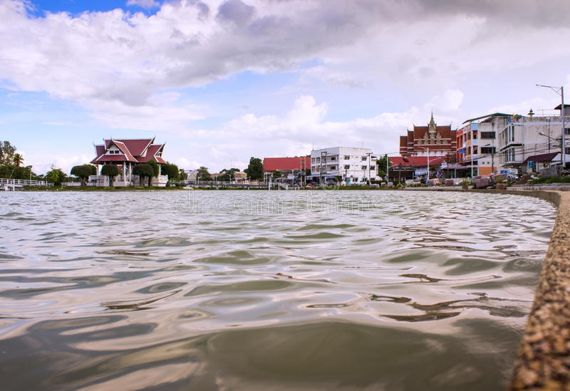 Parc thaïlandais de marécage images stock