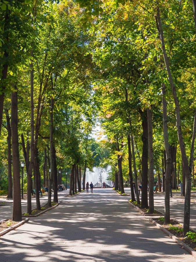 Parc vert avec une fontaine à Chisinau moldau photo libre de droits