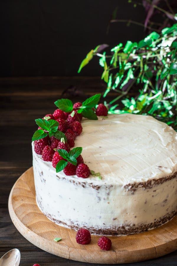 Parcela de bolo cremoso mergulhado do fruto com em fim acima da vista Bolo da framboesa com chocolate Bolo de chocolate Decoração imagens de stock