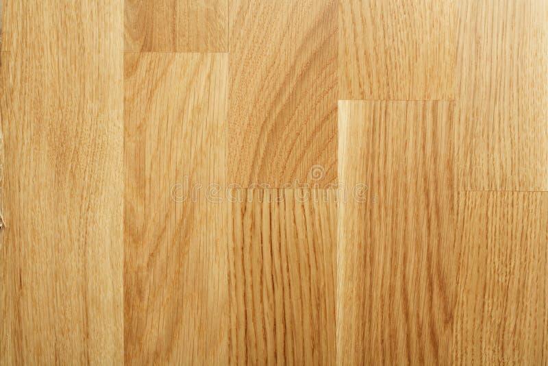Parchè della quercia immagine stock