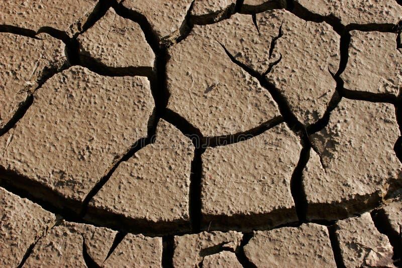 parched земля стоковое фото rf