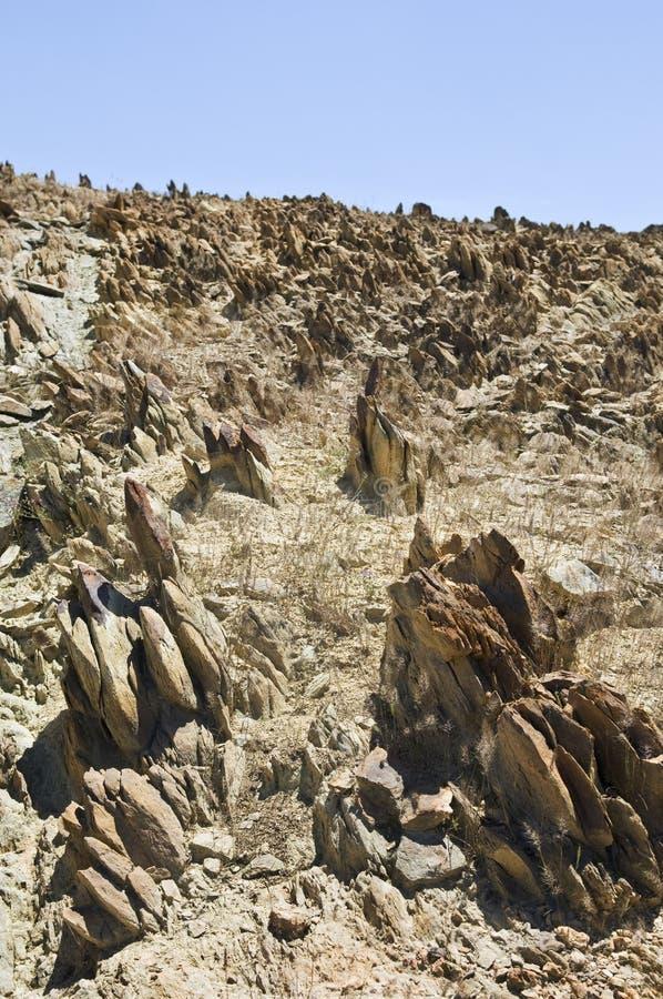 parched почва стоковые изображения