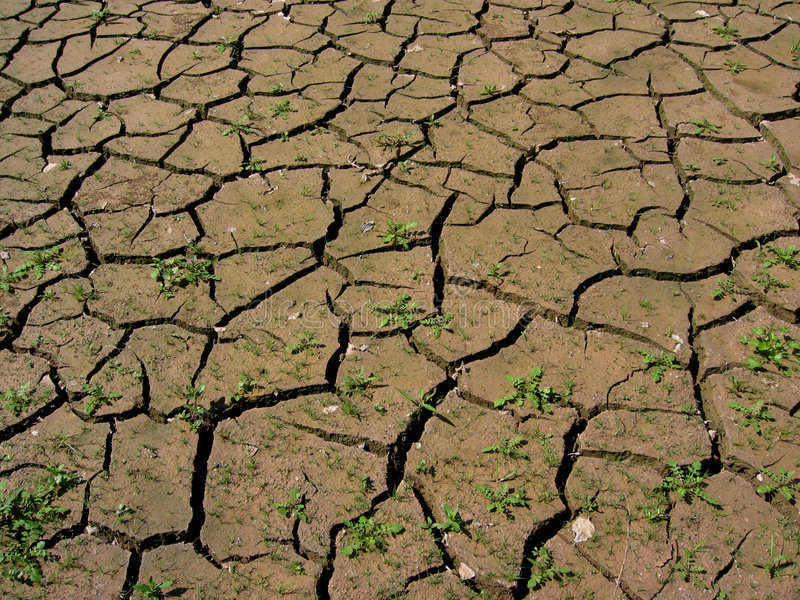 Download Parched earth stock image. Image of dehydration, earth - 190153