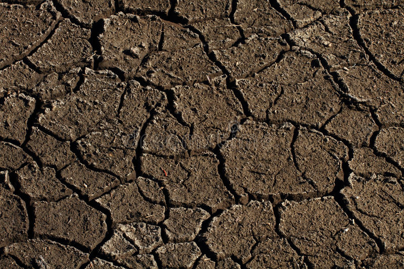 Parched Earth. Cracked and parched dry earth stock images