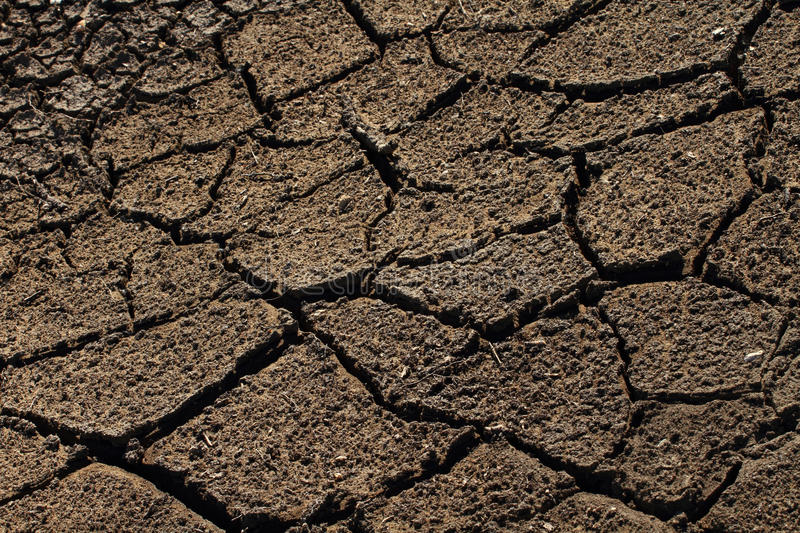 Parched Earth. Cracked and parched dry earth royalty free stock photography