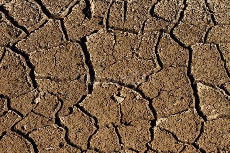 Parched Earth. Cracked and parched dry earth royalty free stock photos