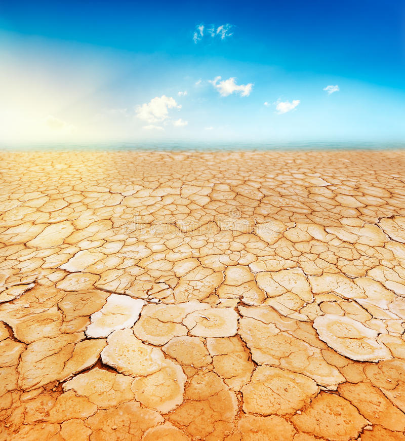 parched jord arkivbild