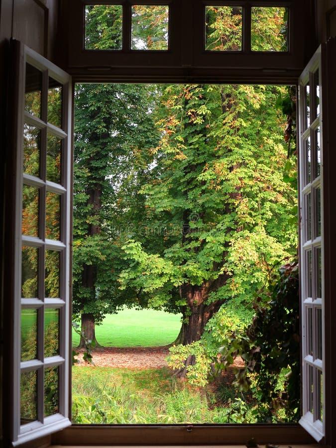 Parcheggi la vista del paesaggio incorniciata in finestra for Fenetre ouverte sur paysage