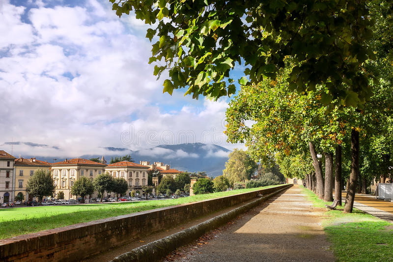 Parcheggi sul muro di cinta medievale a Lucca, Toscana, Italia fotografia stock libera da diritti