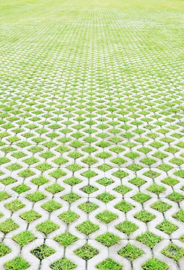 Parcheggio ecologico con l'erba verde immagine stock libera da diritti