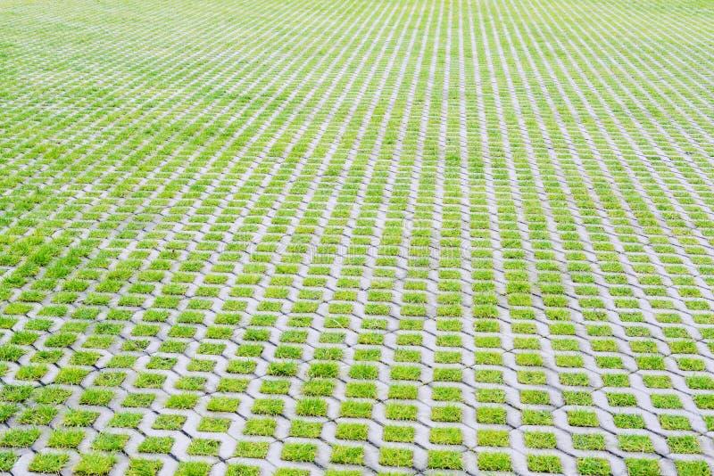 Parcheggio ecologico con l'erba verde fotografia stock