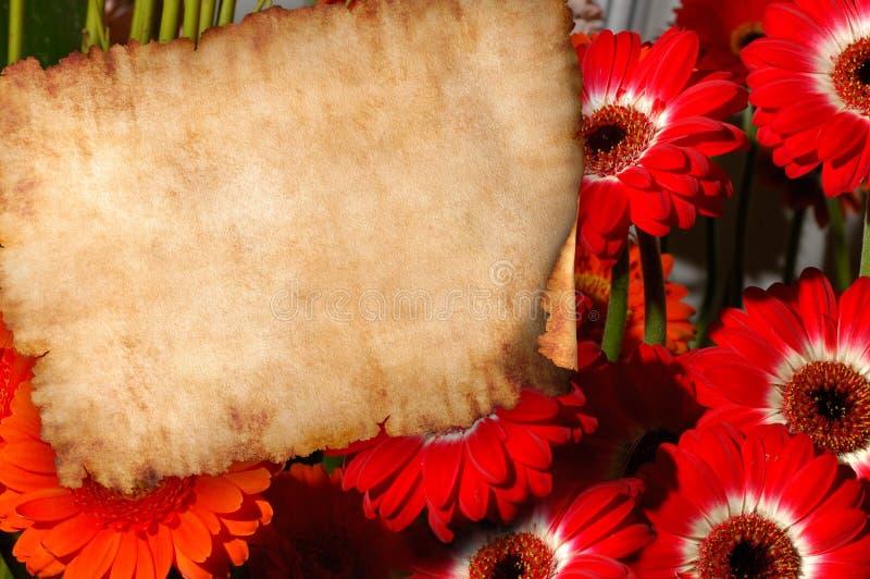 Parchemin sur le rétro fond de lettre de fleurs illustration stock