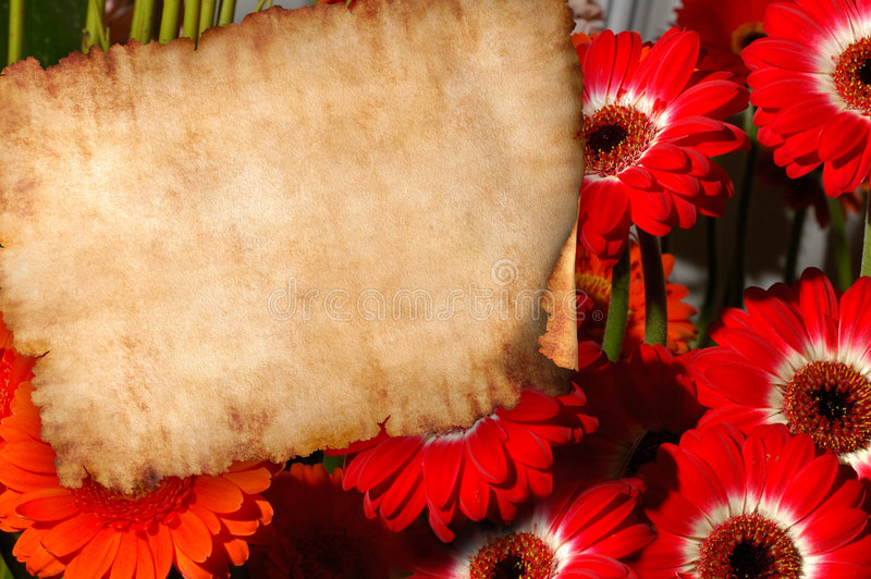 Parchment on flowers retro letter background stock illustration