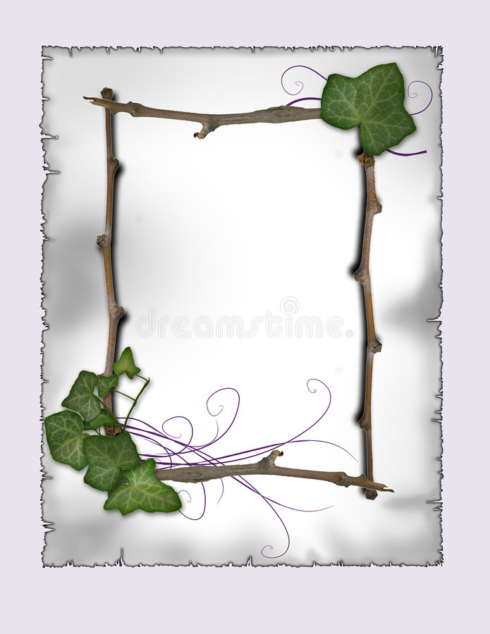 parchment - Ivy and branch frame vector illustration